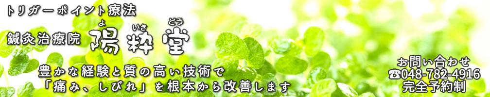 トリガーポイント療法 鍼灸治療院 陽粋堂 埼玉県さいたま市